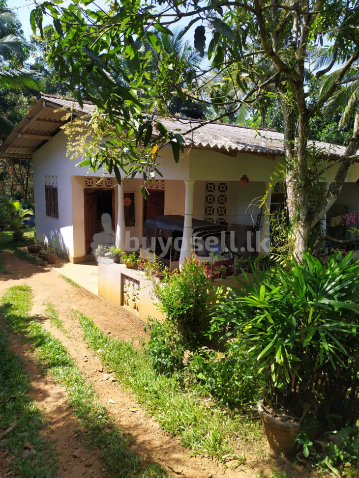 House with Land for Sale - Hanwella for sale in Colombo