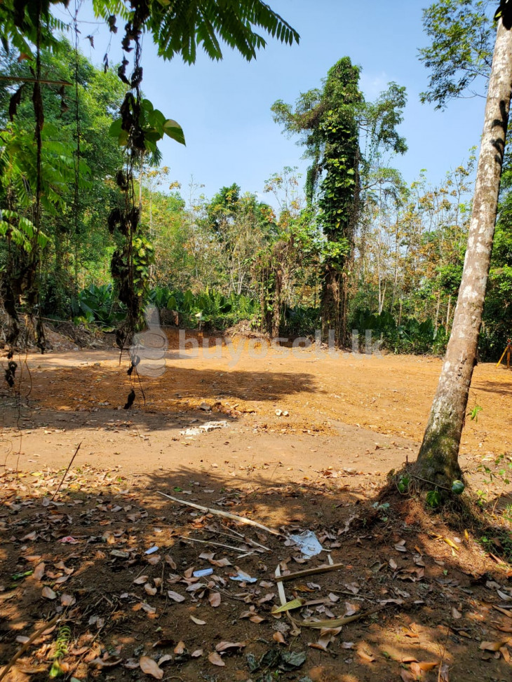 Land For Sale Horana Aguruwathota - Kaluthara District for sale in Colombo