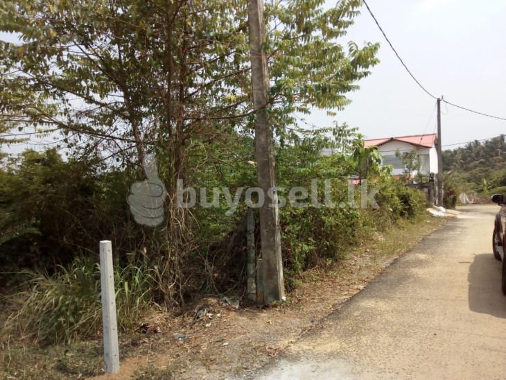 Land for sale at Nawagamuwa Ranala for sale in Colombo
